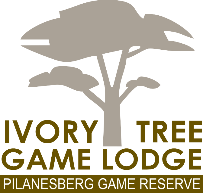 Ivory Tree Game Lodge