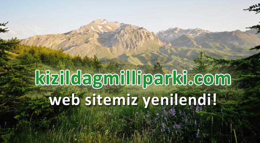 Web Sitemiz Yenilendi ! (Online Rezervasyon Sistemi)